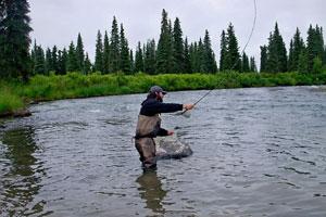 Alaska219